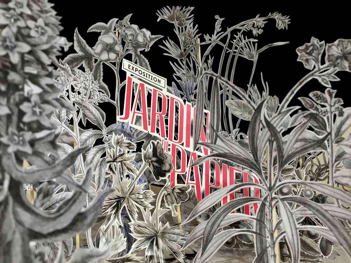Jardin de Papier - Visuel